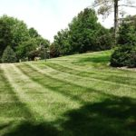 Lawn Care Services St. Louis, MO