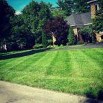 Lawn Service St. Louis, MO.