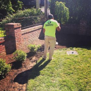 St. Louis MO Garden Bed Maintenance Company