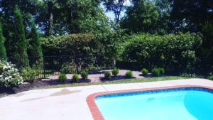 Pool Landscape Design Services St. Louis, MO.