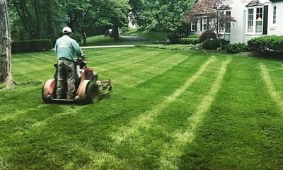 Landscape Maintenace Service St. Louis, MO.