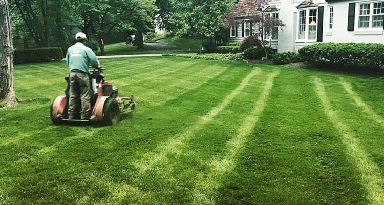 Lawn Care Service St. Louis, MO.