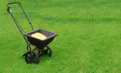 Lawn Care Treatments and Fertilizing.