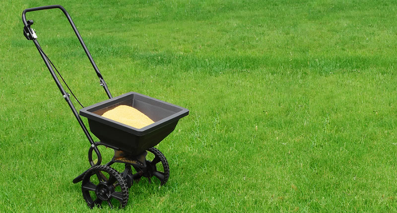 Lawn Fertilizing And Weed Control Services
