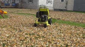 Fall and Winter Lawn Maintenance